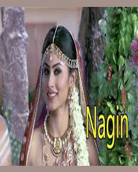naggin small